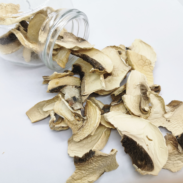 dehydrated button mushroom