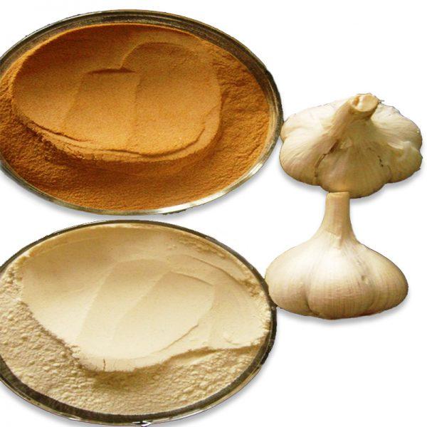 Roasted Garlic Powde